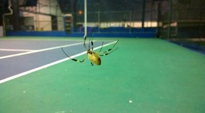 Photo of Tennis Court Smash Tennis Center at Costa Rica