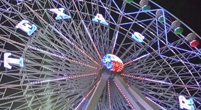 Photo of Theme Park Ride / Attraction Texas Star Ferris Wheel at Martin Luther King Jr. Blvd., Dallas, TX 75210, United States