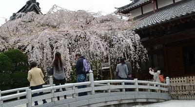 Photo of Temple 玉蔵院 at 浦和区仲町2-13-22, さいたま市 330-0062, Japan