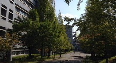 Photo of Trail ニュートン通り (Newton St.) at 高山町, 生駒市, Japan