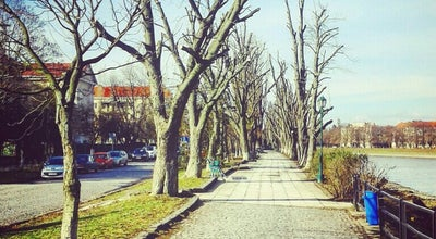 Photo of Trail Алея Каштанів / Aesculus Alley at Наб. Київська, Ужгород 88000, Ukraine