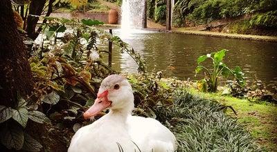 Photo of Garden Jardim Tropical Monte Palace at Caminho Das Barbosas, Funchal 9050-288, Portugal