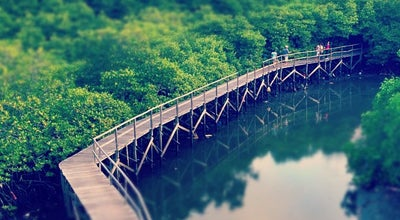 Photo of Other Great Outdoors Mangrove Forest Conservation at Jalan By Pass Ngurah Rai Km 21, Denpasar, Indonesia