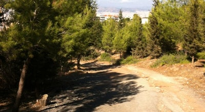 Photo of Trail Mountain Route @ Υμηττος at Greece