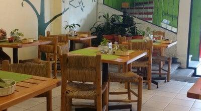 Photo of Vegetarian / Vegan Restaurant Hojas Verdes at Av. Rafael Murillo Vidal #149, Jalapa 91060, Mexico