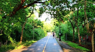 Photo of Park Grove-Cedar Bike Path at Davis Square, Somerville, MA 02144, United States