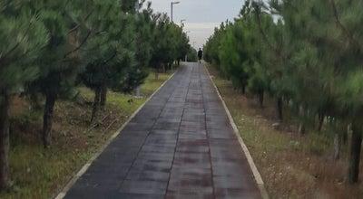 Photo of Trail Yuruyus Parkuru at Turkey