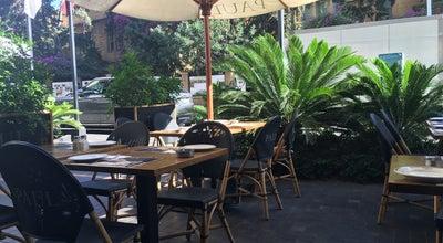 Photo of French Restaurant Paul at Bliss Street, Beirut, Lebanon