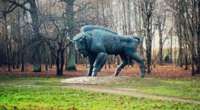 Photo of Park Ąžuolynas at Vydūno Al., Kaunas, Lithuania
