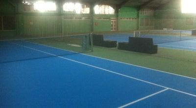 Photo of Tennis Court TK Gemax at Veljka Lukića Kurjaka Bb, Belgrade 11040, Serbia
