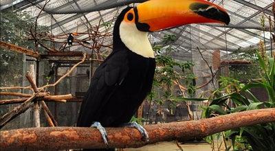 Photo of Zoo 神戸どうぶつ王国 (Kobe Animal Kingdom) at 中央区港島南町7-1-9, 神戸市 650-0047, Japan