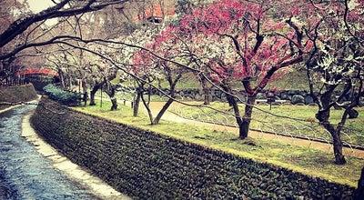 Photo of Historic Site 史蹟 御土居(北野御土居) at 上京区馬喰町, 京都市 602-8386, Japan