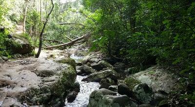 Photo of Trail Trilha da Cachoeira do Poção at Florianópolis, Brazil