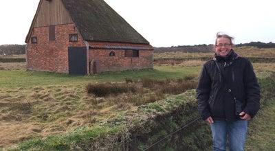 Photo of Field De Muy Natuurgebied at Slag Door De Nederlanden, texel, Netherlands