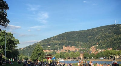 Photo of Historic Site Heidelberger Schloss at Germany
