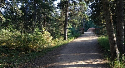 Photo of Trail Whitemud Park & Ravine at 13204 Fox Drive Northwest, Edmonton, Ca T6H 4Y7, Canada