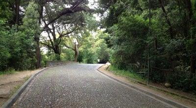 Photo of Park Parque Ecuador at Victor Lamas, Concepción, Chile