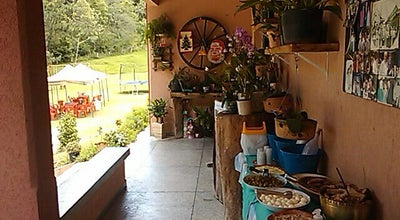 Photo of Brazilian Restaurant Restaurante Rural Bosque Italiano at Rod. Da Uva, Km 8, Colombo, Brazil