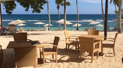 Photo of Bar Coco Mar Beach Bar at La Romana, Dominican Republic