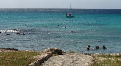 Photo of Beach Boca Catalina at Malmok, Palm Beach, Aruba