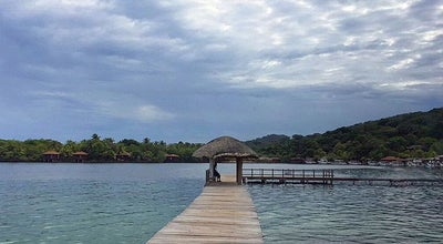 Photo of Science Museum Roatan Institute for Marine Science at Sandy Bay, Honduras