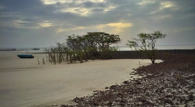 Photo of Beach Ilha de Algodoal at Brazil
