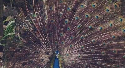 Photo of Zoo Wildlife Park at No 3, Jalan Pjs 11/11, Petaling Jaya 46150, Malaysia