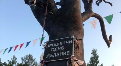 Photo of Outdoor Sculpture Дерево желаний at Онежская Наб., Petrozavodsk, Russia