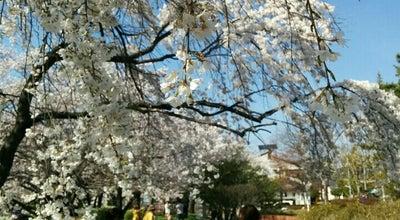Photo of Park 昭和の森公園 at 上野2丁目120-13, 長野市, Japan