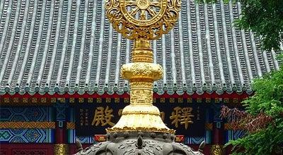 Photo of Temple 大悲禅院 at 河北区天纬路40号, 天津, 天津, China