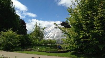 Photo of Botanical Garden Botanischer Garten Universität Zürich at Zollikerstrasse 107, Zurich 8008, Switzerland