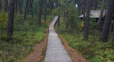 Photo of National Park Ragakāpas Dabas Parks at Latvia