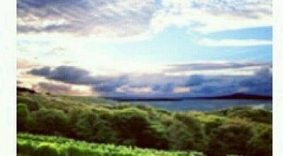 Photo of Winery Cable Bay Winery at 12 Nick Johnstone Dr, Oneroa, Waiheke Island, New Zealand