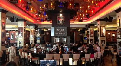 Photo of American Restaurant Hard Rock Cafe București at Șos. Kiseleff Nr. 32, Sect. 1, București 011343, Romania