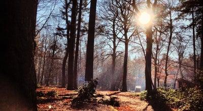 Photo of Park Provinciaal Domein Tillegembos at Tillegemstraat 83, Sint-Michiels 8200, Belgium