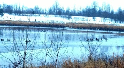Photo of Park Mary Beth Doyle Park & Wetland Conservation at 3195-3199 Chelsea Cir, Ann Arbor, MI 48108, United States