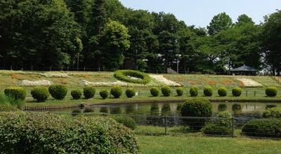 Photo of Park 大崎公園 at 緑区大崎3156-1, さいたま市 336-0974, Japan
