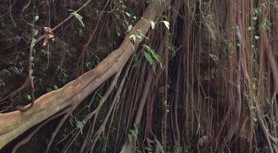 Photo of Art Gallery Jaba Pura Dalem Agung Monkey Forest at Monkey Forest St., Ubud, Indonesia