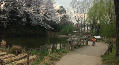 Photo of Park 姿見の池 at 西恋ケ窪1-8, 国分寺市 185-0013, Japan