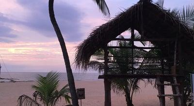 Photo of Bar Jetwing Sea Beach Bar at Sri Lanka