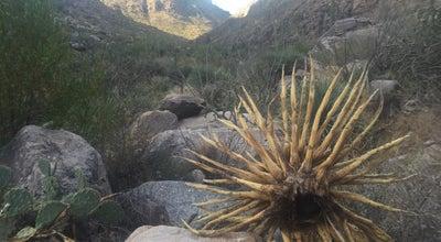 Photo of Trail pima canyon trailhead at Magee, tucson, AZ 85704, United States