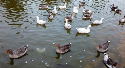 Photo of Lake Lago de las Canteras at Av. Dr. Juan A. Cachón, Montevideo, Uruguay