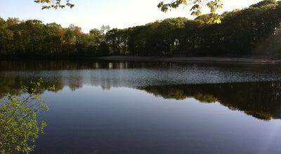 Photo of Lake Lexington Reservoir at Marrett Rd, Lexington, MA 02421, United States
