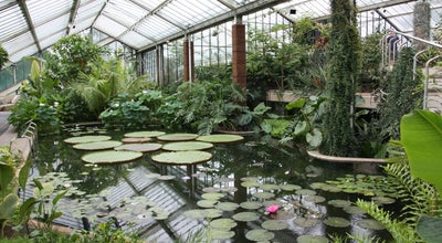 Photo of Botanical Garden Princess of Wales Conservatory at Kew Gardens, Richmond upon Thames TW9 3AB, United Kingdom