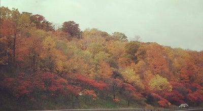 Photo of Mountain Niagara Escarpment at Campbellville, ON, Canada
