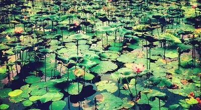Photo of Lake Taman Tasik Permaisuri at Bandar Sri Permaisuri, Cheras 56000, Malaysia