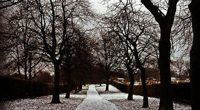 Photo of Park Woodhouse Moor (Hyde Park) at Hyde Park Rd, Leeds LS 6 1, United Kingdom