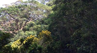 Photo of Park 十八尖山公園 at 寶山路, 新竹市 300, Taiwan