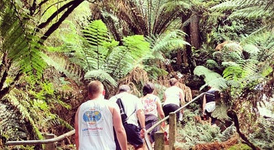 Photo of Trail 1000 Steps Kokoda Memorial Track at Mt Dandenong Tourist Rd, Upper Ferntree Gully, VI 3156, Australia