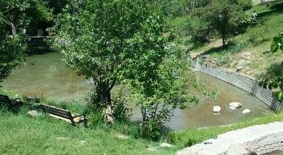 Photo of Park Botanik Parkı at Çankaya, Ankara, Turkey